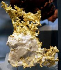 A Delicate Gold Nugget